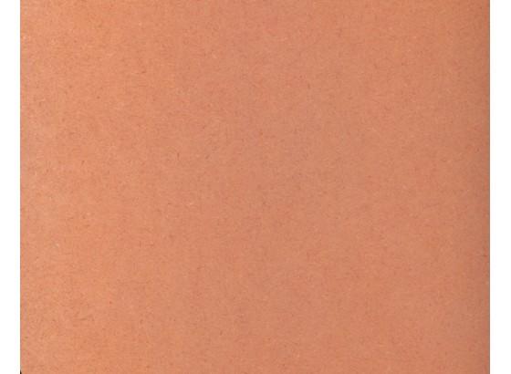 Oranžinė/OR